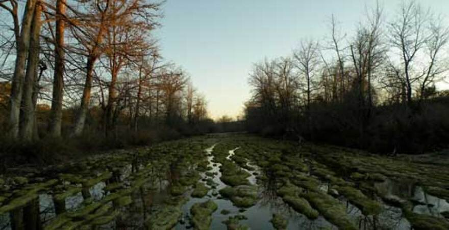 ranch-medina-river-lg.jpg