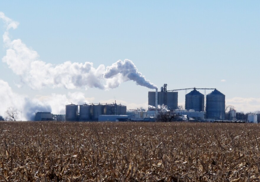 013114_RFS-economy-plant.jpg