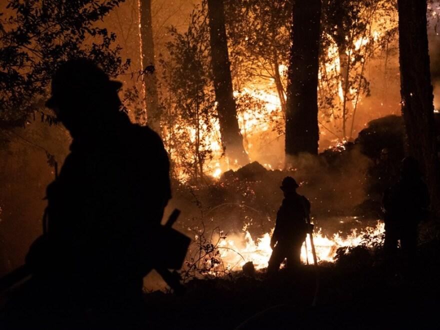 wildfire Nixon.jpg