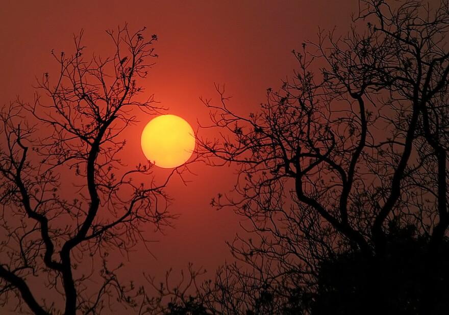 west texas wildfire.jpg