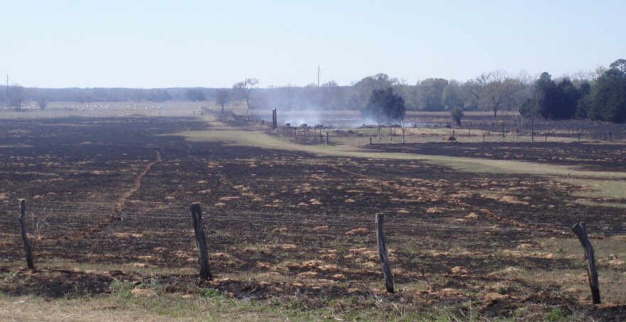 Bastrop_Co._Wildfire_033.jpg