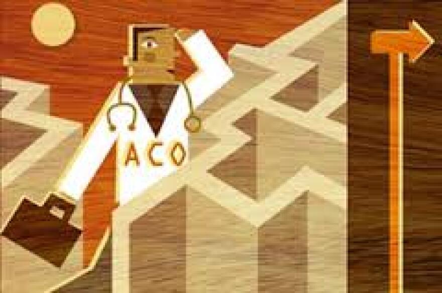 ACO_art_from_KHN.jpg