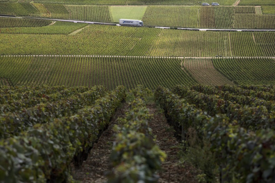 A truck passes by burgundy vineyards during the grape harvest season last month in Volnay, central France.