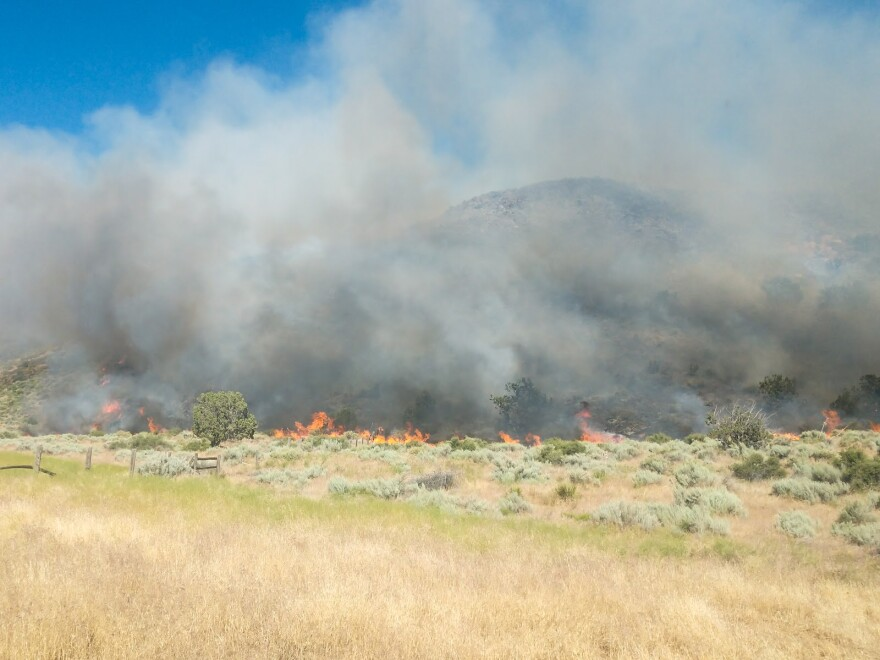 Photo of a fire burning the golden grasses at the base of a hillside and covering the feature in smoke