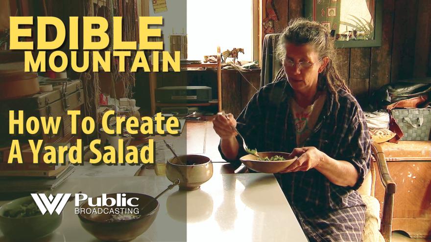 edible_mountain_-_yard_salad_2.png