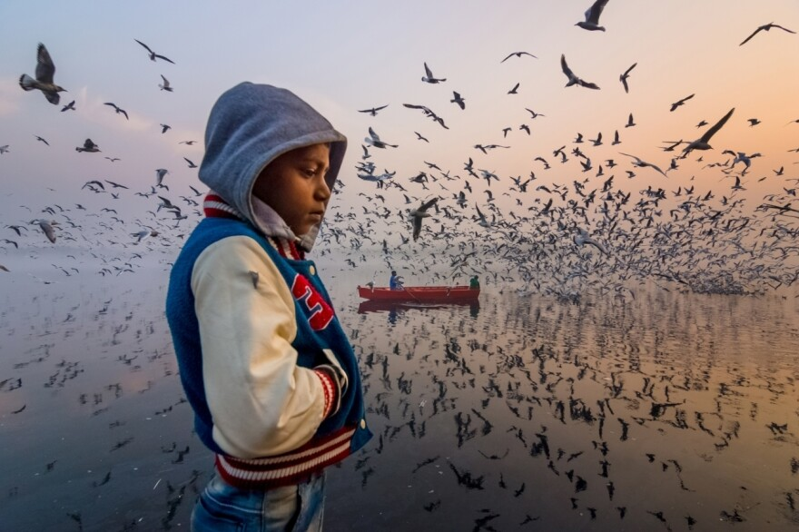 A boy is immersed in his own thoughts as thousands of seagulls scatter across the Yamuna River in Delhi, India.