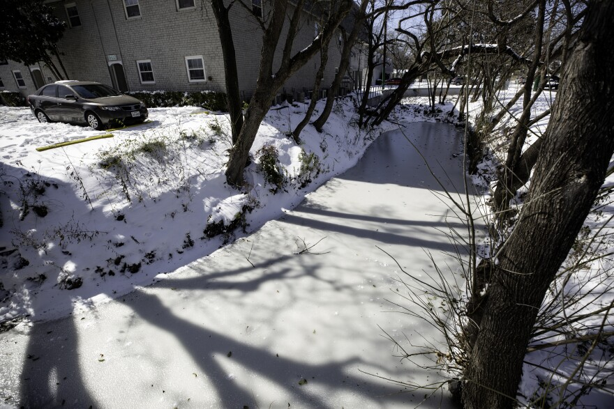 A frozen creek in the Hyde Park neighborhood during the February 2021 winter storm.