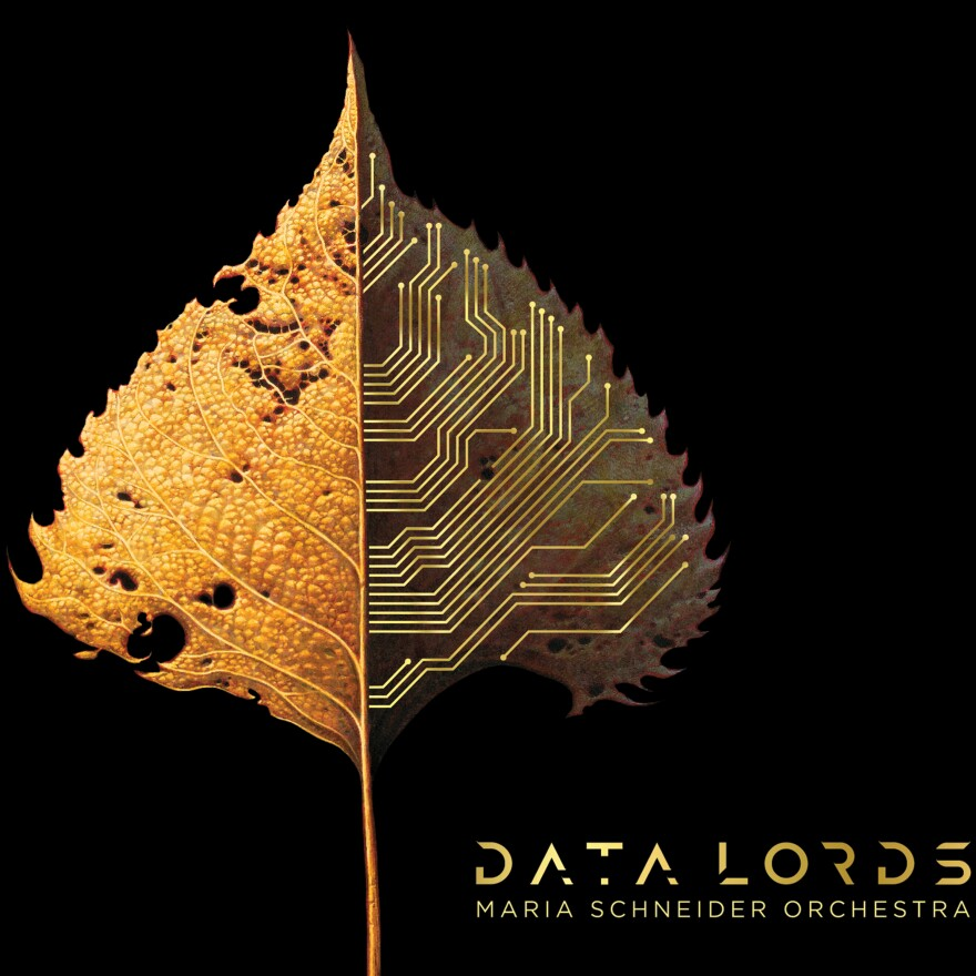 Cover art for Data Lords.