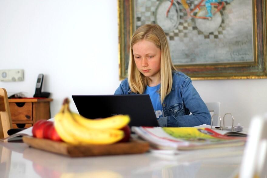 Online education net learning girl.jpg