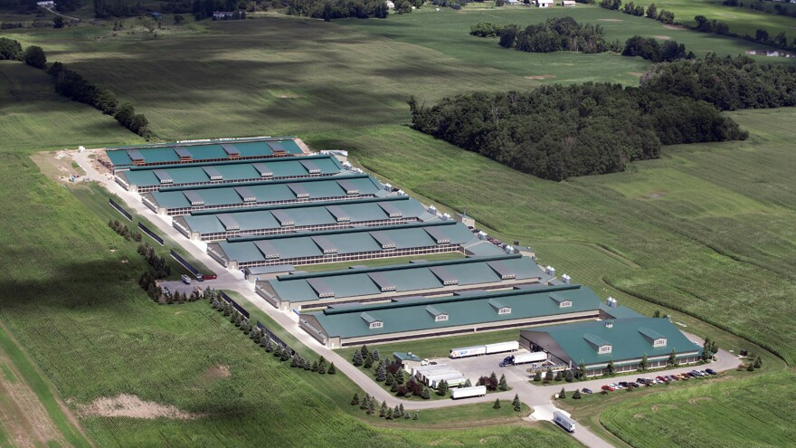The Cornucopia Institute commissioned this photo of an organic egg producer in Saranac, Mich. According to Cornucopia, the facility is owned by Herbruck's Poultry Ranch, which has a license to maintain up to 1 million chickens on this site.