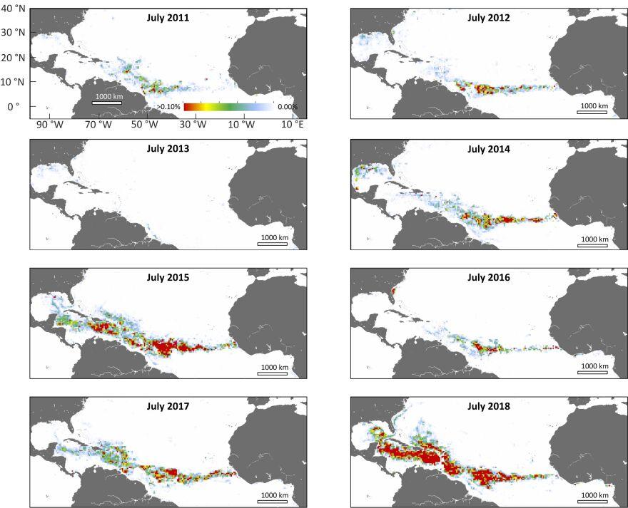 Chart of sargassum blooms.