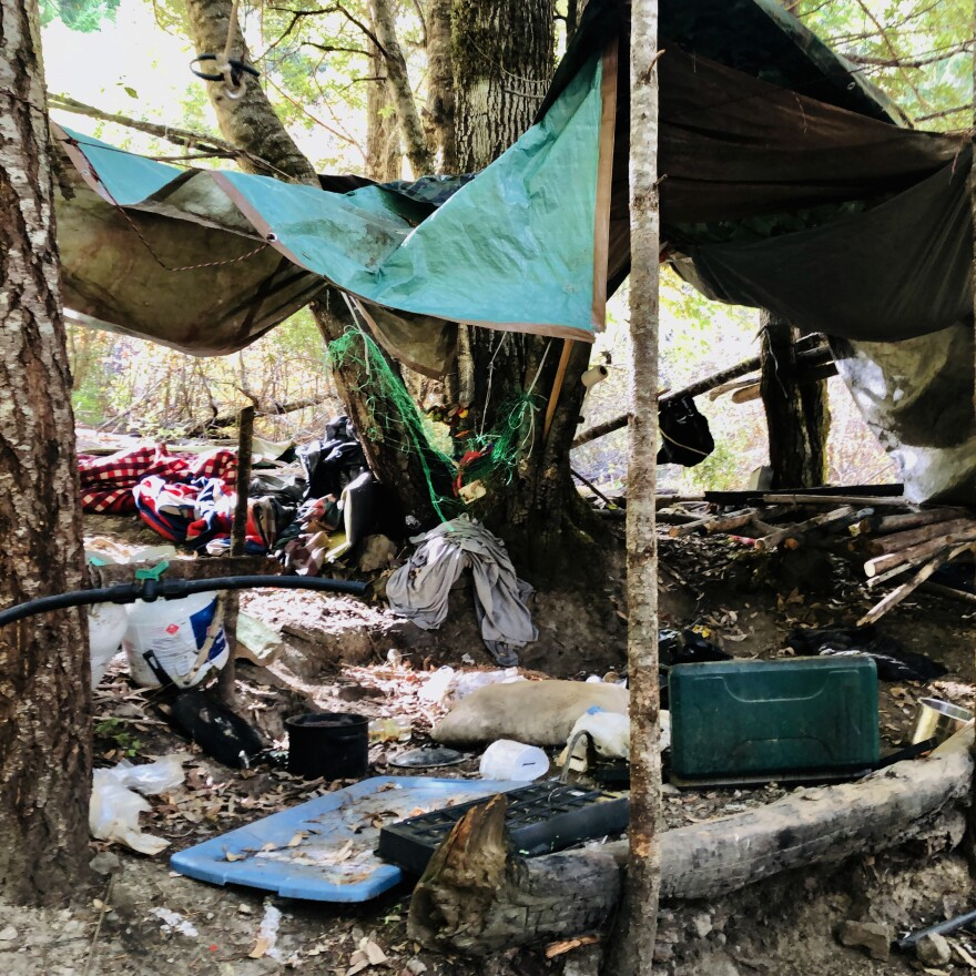 A sprawling grow and camp site was abandoned in California's Shasta-Trinity National Forest. There's some 3,000 pounds of trash here from discarded clothes and propane tanks to 3 miles of plastic irrigation pipes — an indication this site has likely been used for years.