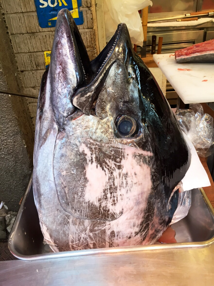 A Pacific bluefin tuna head, separated from its body, for sale at the Tsukiji Fish Market.