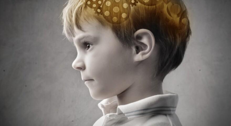 child-brain-690x377.jpg