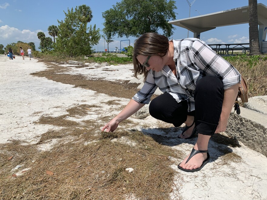 A woman crouches on a beach searching for plastic pellets called nurdles
