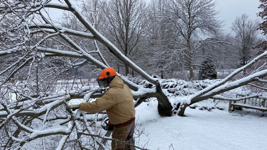 a photo of workers at Holden Arboretum dealing with winter storm damage
