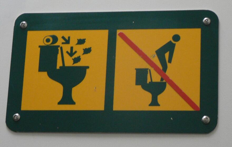 Experts agree that the image on the left urges toilet users to flush toilet paper in the bowl rather than toss it in a trash can. As for the image on the right, it appears to offer a double warning: Don't stand on the seat, don't relieve yourself in the upper tank.