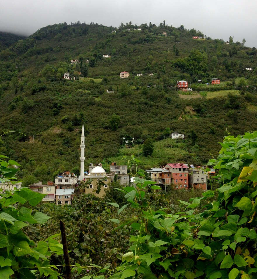 """Steep hills surround the village of Kuskoy, high in the mountains above Turkey's Black Sea coast. Some villagers here can still understand the old """"bird language,"""" a form of whistled Turkish used to communicate across these deep valleys."""