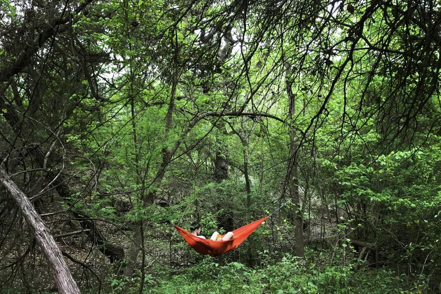A person reads a book at Blunn Creek Nature Preserve in South Austin.