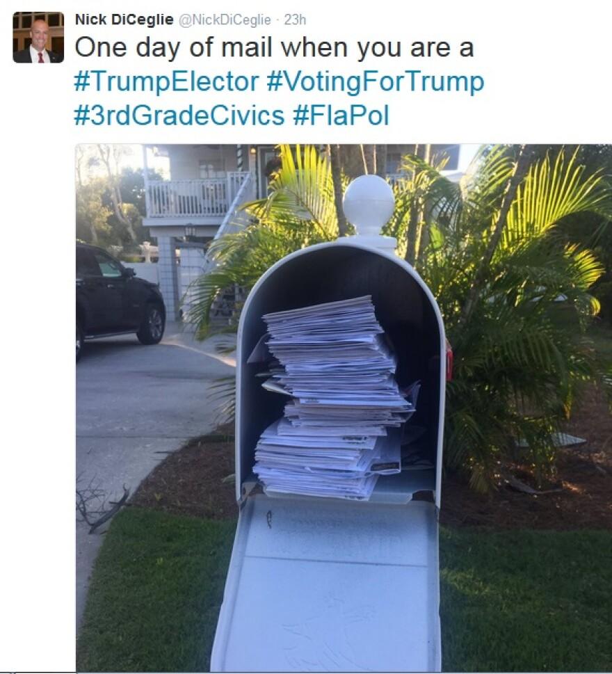 Nick DiCeglie's mailbox