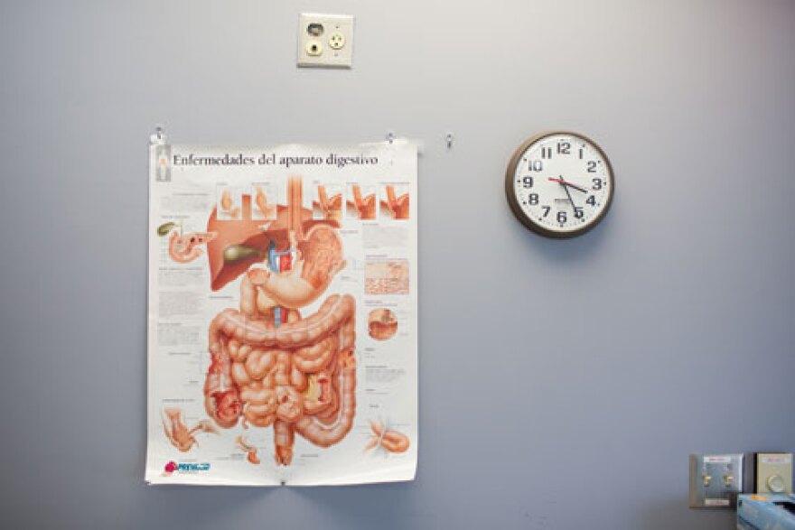 digestive_system_poster.jpg