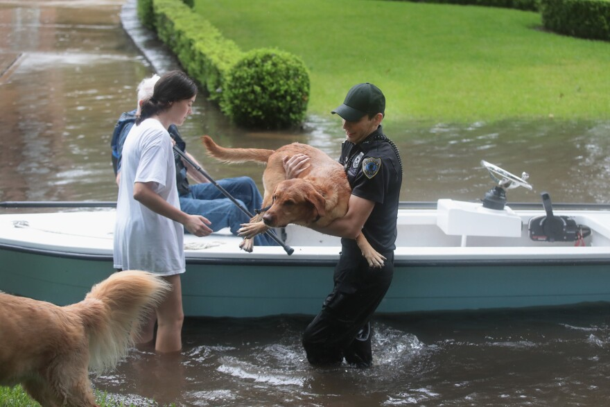 Volunteers and officers from the neighborhood security patrol help to rescue residents and their dogs in the River Oaks neighborhood after it was inundated with flooding from Hurricane Harvey in Houston, Texas.