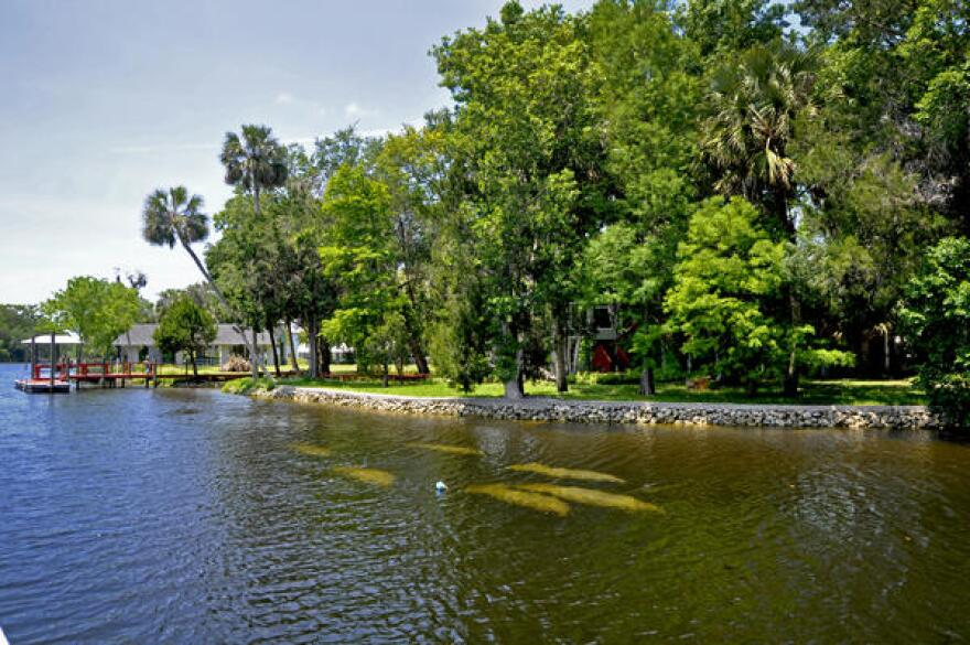 Yankeetown sits on the north bank of the Withlacoochee River, where manatees like to swim.