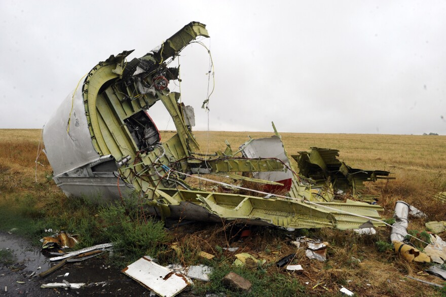 A photo taken on September 9, 2014 shows part of the Malaysia Airlines Flight 17 at the crash site in the village of Hrabove, Ukraine.