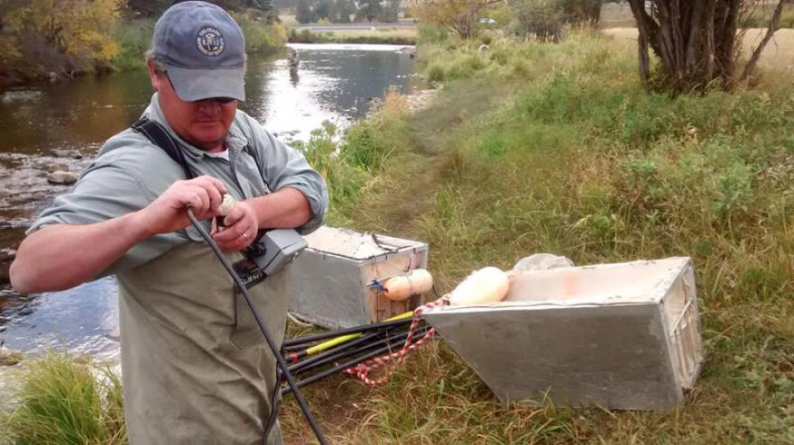 Ben Swigle is an aquatic biologist with Colorado Parks and Wildlife. He leads the annual fish count on the Big Thompson River.