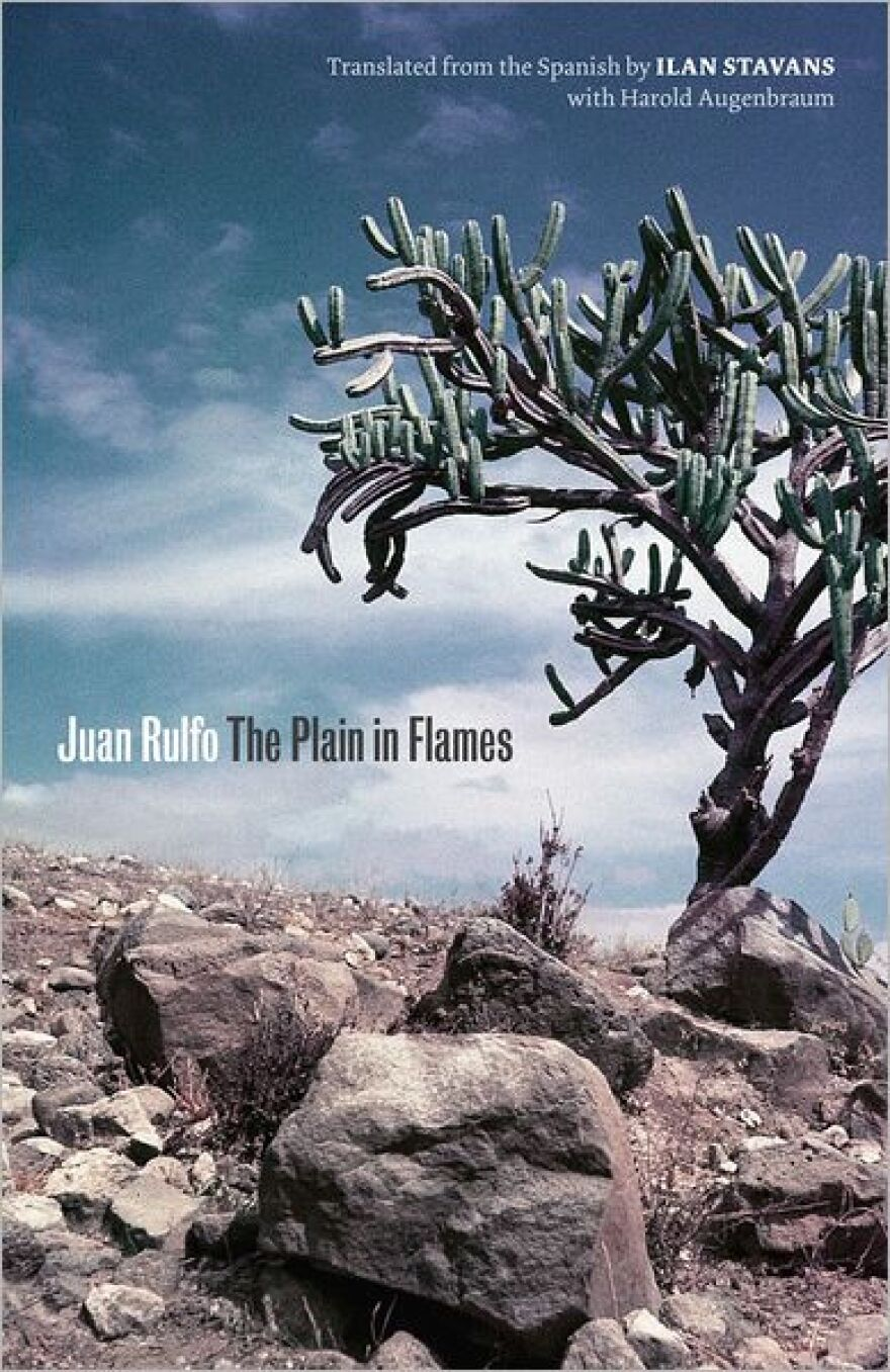 the plain in flames book cover.jpg