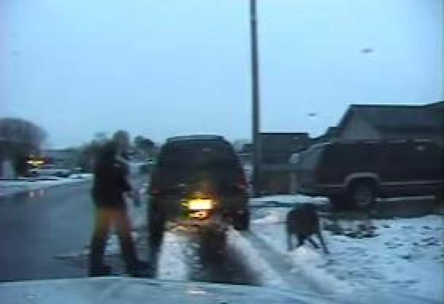 Video screengrab from the February dog shooting incident in Filer, Idaho.