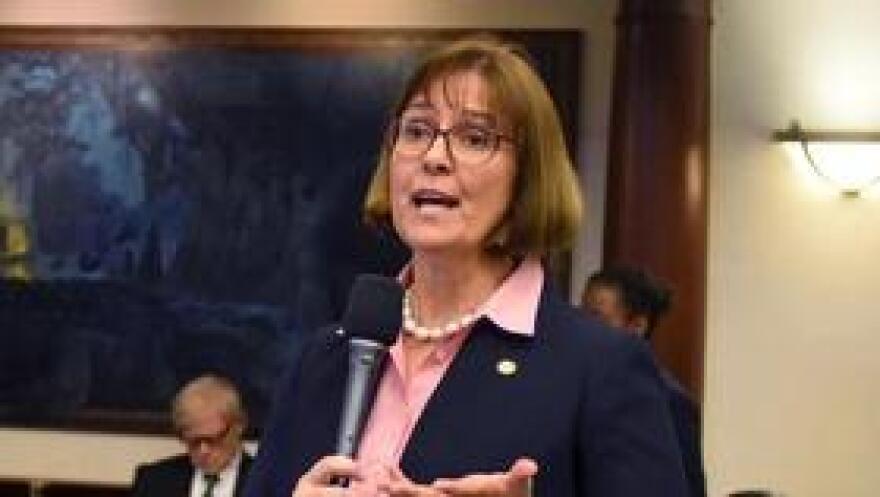 Rep. Cyndi Stevenson debates on the House floor on April 25, 2017.