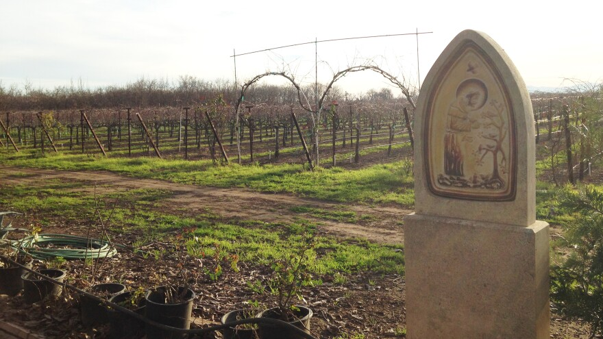 The St. James vineyard at the Abbey of New Clairvaux. The 20 brothers of the abbey belong to an order with a tradition of winemaking that dates back nearly 900 years.