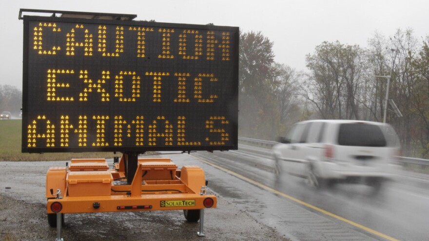 <p>A sign warning motorists that exotic animals are on the loose rests on I-70 Wednesday, Oct. 19.</p>