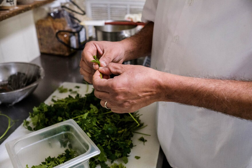 Cilantro is a big part of Indian cuisine — and of Tex-Mex cooking, too. Bhatt's cooking often highlights connections between the American South and the Global South.