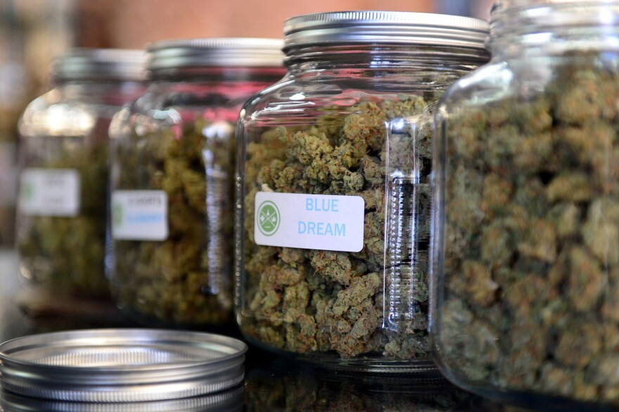 "The highly rated variety of medical marijuana known as  ""Blue Dream"" was displayed among other strains at a cannabis farmers market in Los Angeles in 2014."