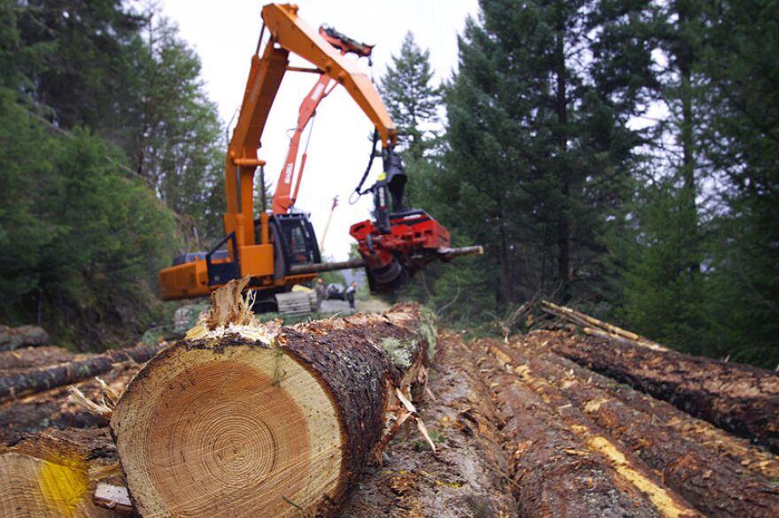 logging_loader_blm_pix.jpg