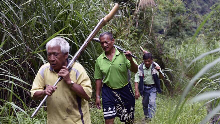 Tama Talum (center) and fellow aboriginal hunters carry shotguns in the mountains in Taitung, eastern Taiwan, on July 2. Hunting rights have been a major point of contention between indigenous Taiwanese and the government. On Monday, President Tsai Ing-wen apologized to the island's indigenous people for injustices over the centuries.