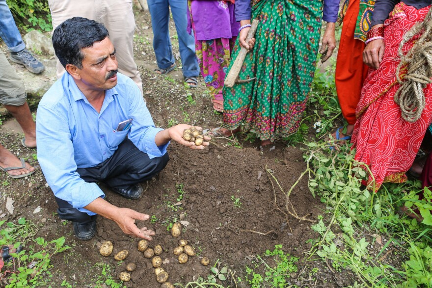 Bachi Singh, a field supervisor for TERI,<strong> </strong>demonstrates best practices for planting in a village in Uttarakhand. He says this village could someday grow fruit trees — excellent cash crops.