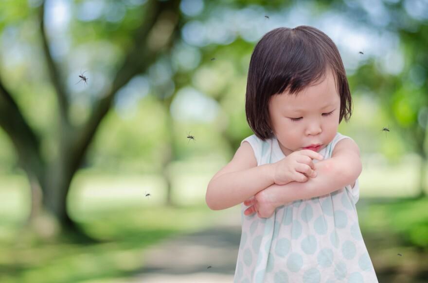mosquitoesgirl.jpg