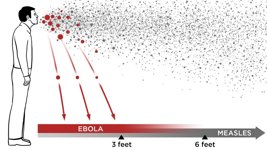 Viruses can spread through the air in two ways: inside large droplets that fall quickly to the ground (red), or inside tiny droplets that float in the air (gray). In the first route, called droplet transmission, the virus can spread only about 3 to 6 feet from an infected person. In the second route, called airborne transmission, the virus can travel 30 feet or more.