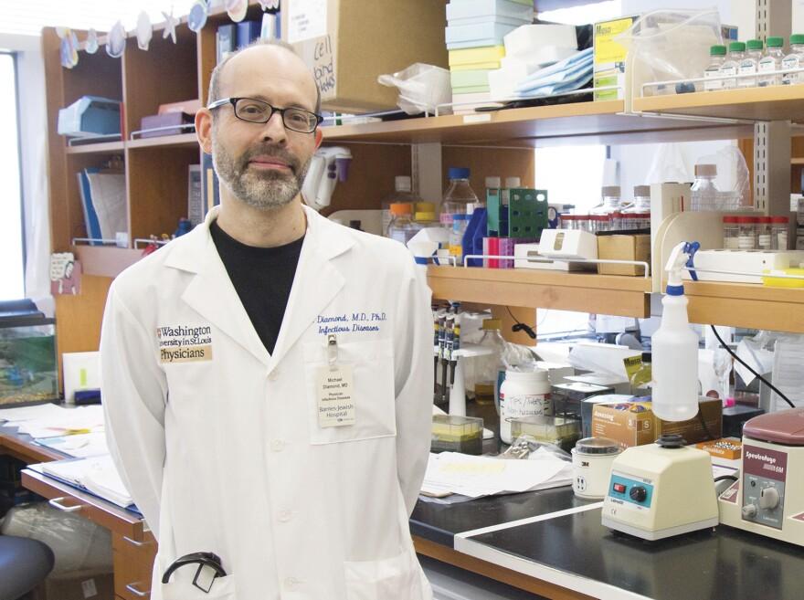 Washington University School of Medicine professor Michael Diamond.
