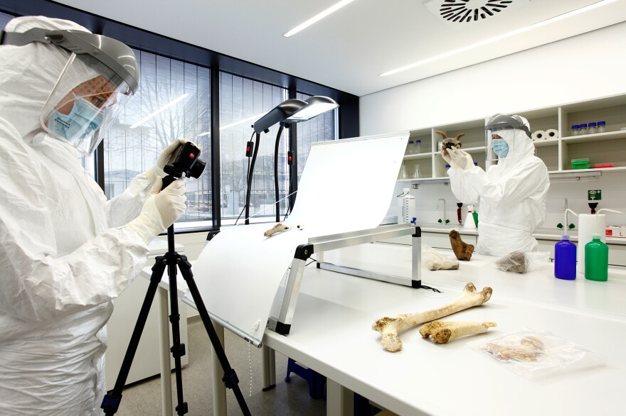 Scientists in a lab in Mainz, Germany, analyze ancient bone samples from the Zagros Mountains in Iran.