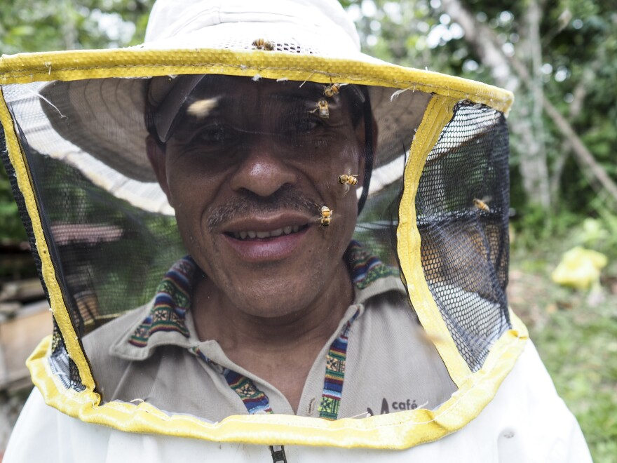 The workers who used to sew beekeeping suits for Domingo de la Cruz Toma, a beekeeping specialist for the Guatemalan cooperative Maya Ixil, are now sewing face masks.