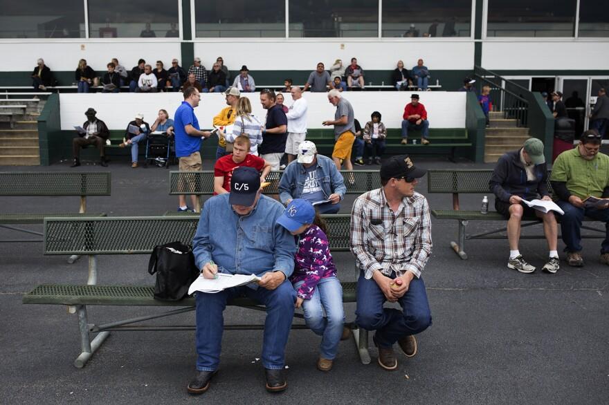 Spectators wait for a race to start.