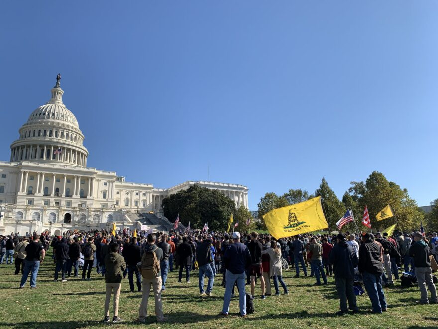 The crowd at Saturday's Second Amendment Rally in front of the Capitol in Washington, D.C., during activist Maj Toure's remarks.