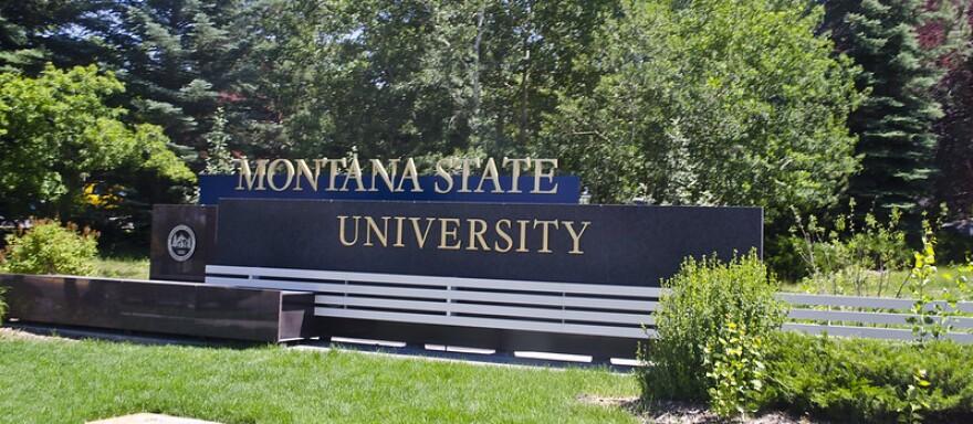 The Montana State University logo.