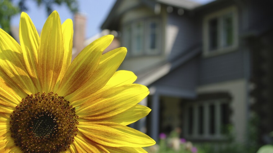Economists say strong home sales this spring could drive job creation, as well as boost personal wealth and consumer confidence.