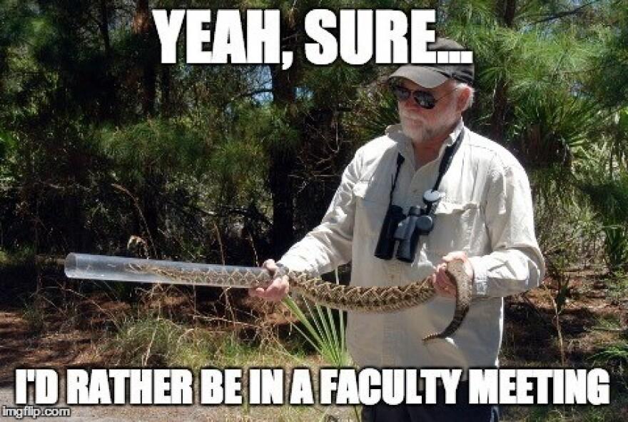 Harry Greene Meme