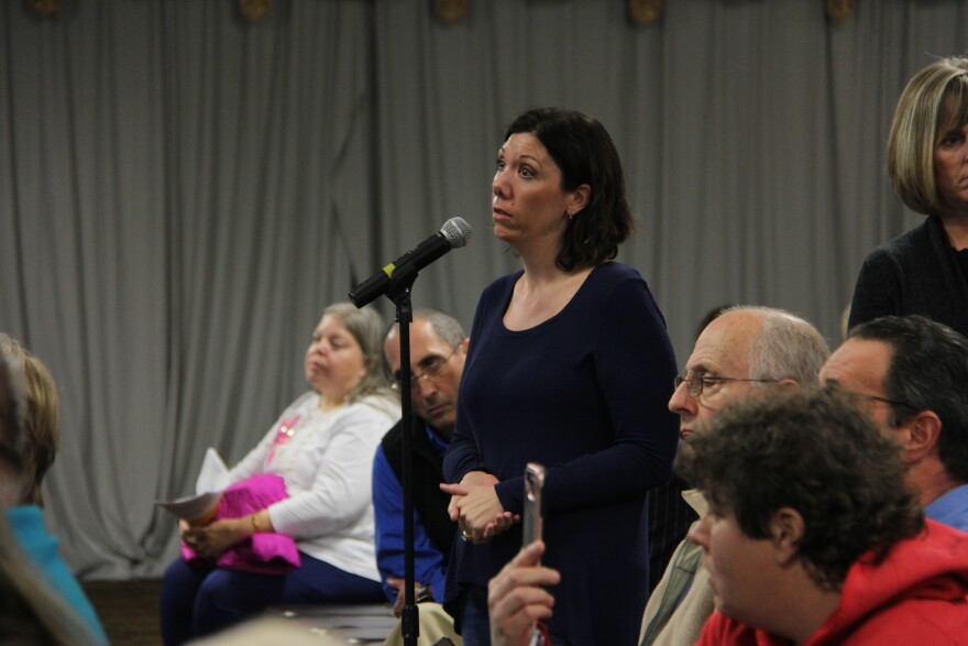 Maryland Heights resident and environmental activist Dawn Chapman at a meeting held by Missouri health officials in January 2019.
